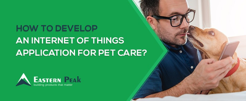 internet-of-things-application-for-pet-care