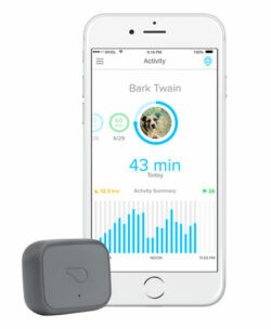 whistle-pet-tracker
